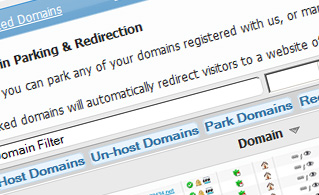 domain manager domain parking